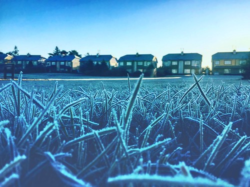 Winteris coming #ireland