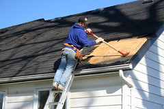 roofer, roof, siding, blue,