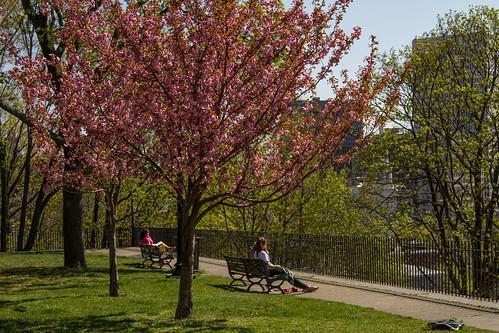 Relaxing Spring Day by GoProvidenceRI via I {heart} Rhody