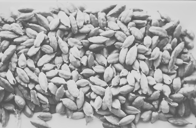 Cardamom in Black and White Gray Film by Mary Banducci