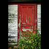 The Old Red Door