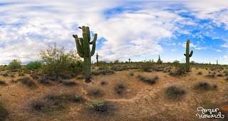 20041115 Desert Ridge Pano 8