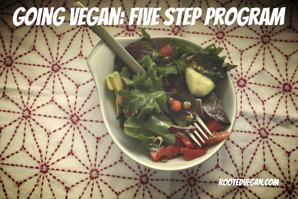 five steps to going vegan