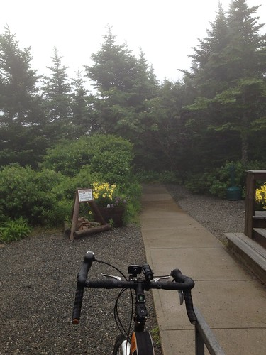 Foggy ride up Cadillac Mountain