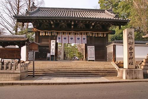 【写真】2013 桜 : 御香宮神社/2019-10-26/IMGP9736