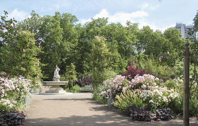 Rose garden - Hyde Park Corner