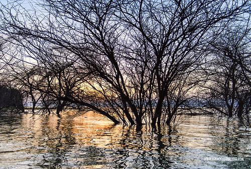 Kenya - Lake Baringo 05