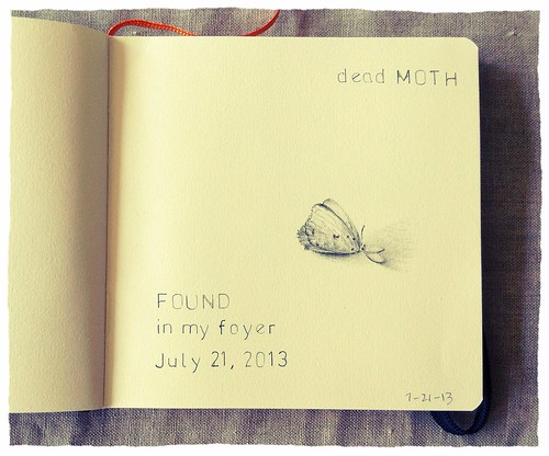 Lost and Found Sketchbook