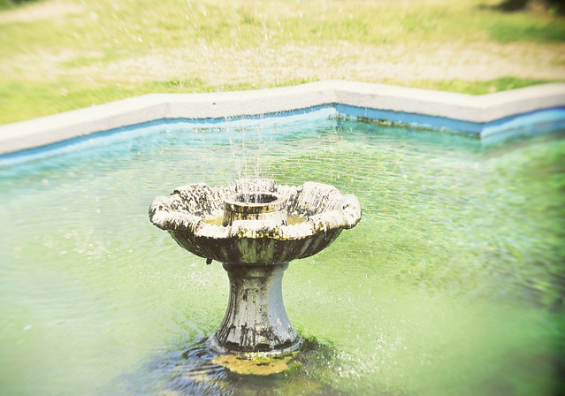 Brukenthal_Avrig_gardens (4)