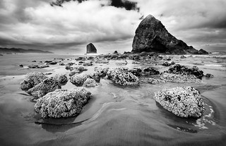 Canon Beach Landscape (B&W)