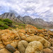 boulders to mountains - diversity of the False Bay coastline
