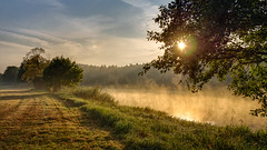Mist is the softener of nature (2)