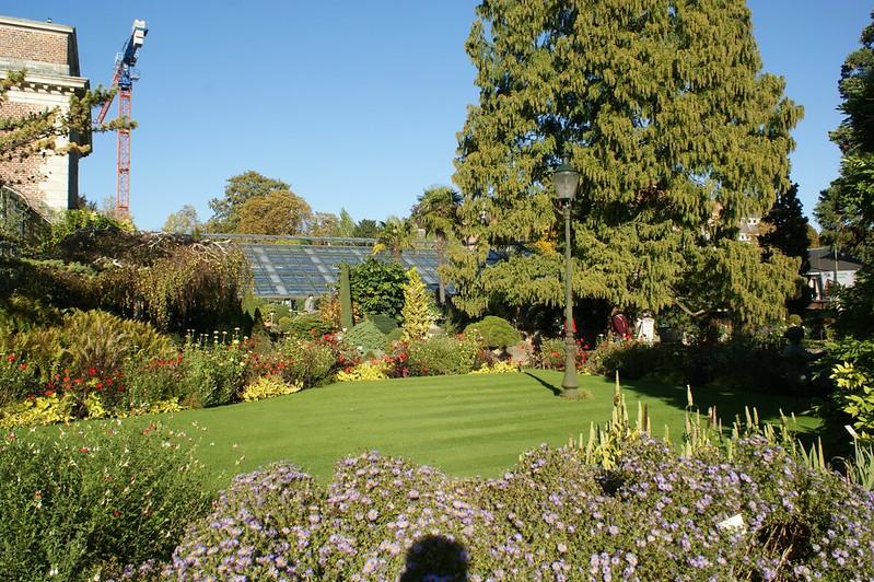 Jardín Botánico - Lovaina Aprendiendo botánica en Lovaina - 30865204066 e8a88de5dc c - Aprendiendo botánica en Lovaina