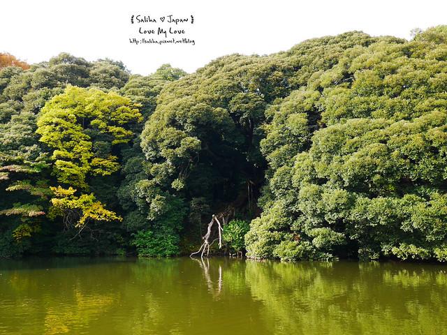日本東京自由行新宿御苑庭園景點 (21)