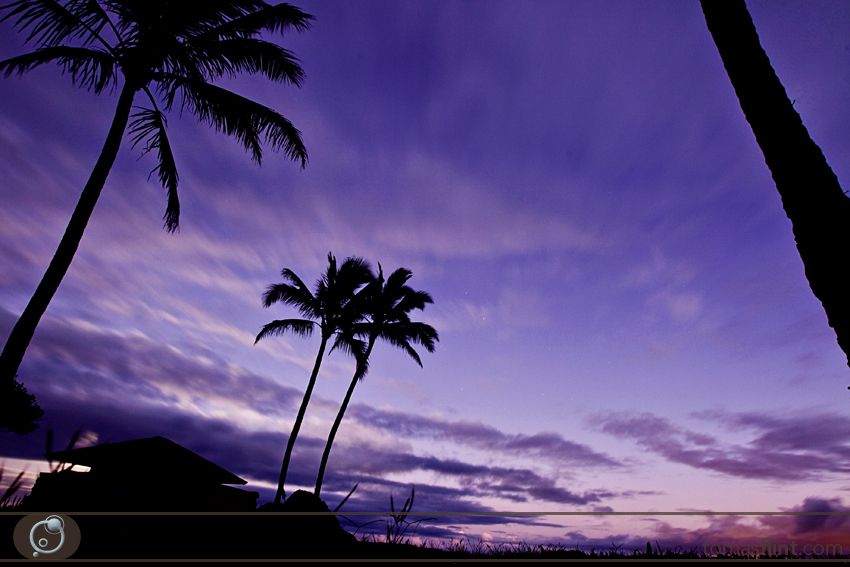 T_Flint_Hawaii_Photo-146