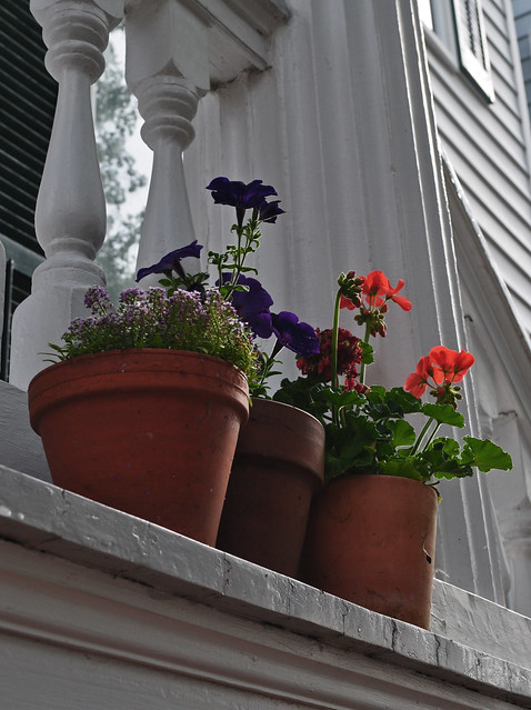 North St. Porch Pots