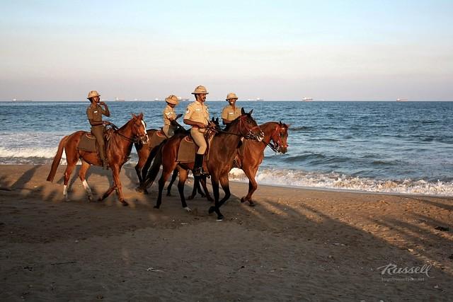 Horseback Patrol I