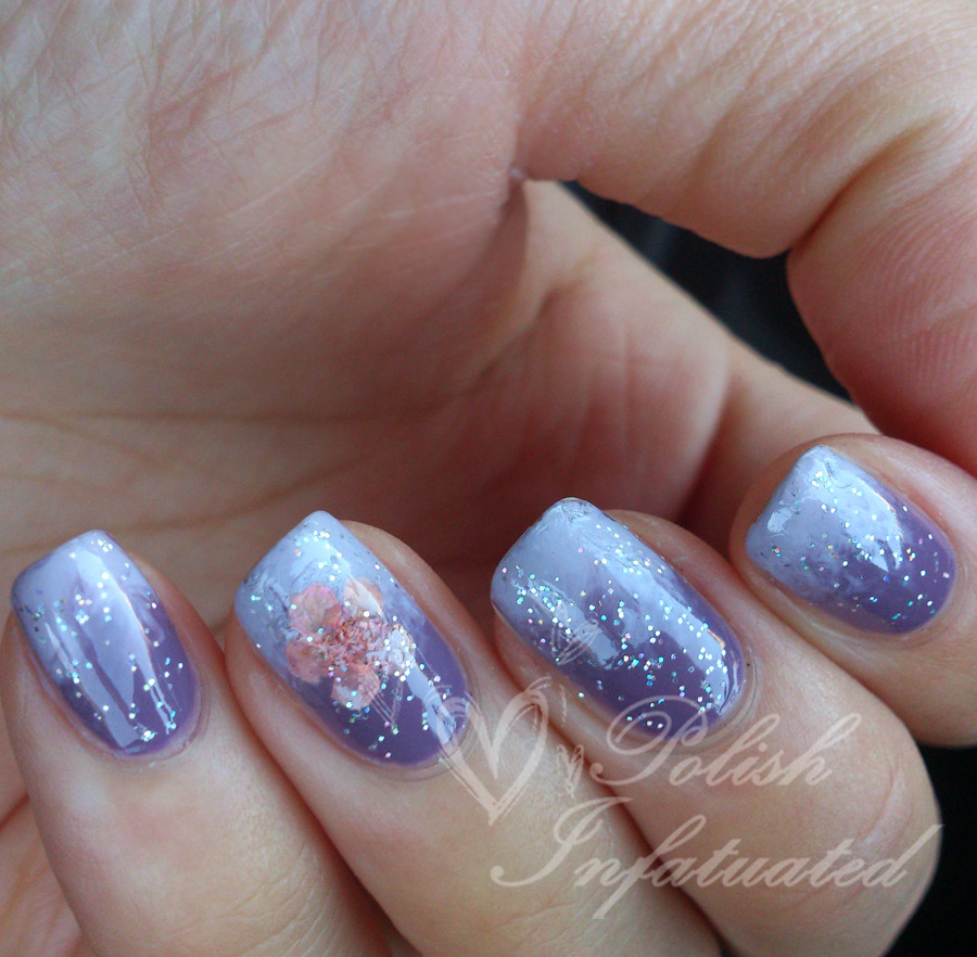 purple gradient with dried flower