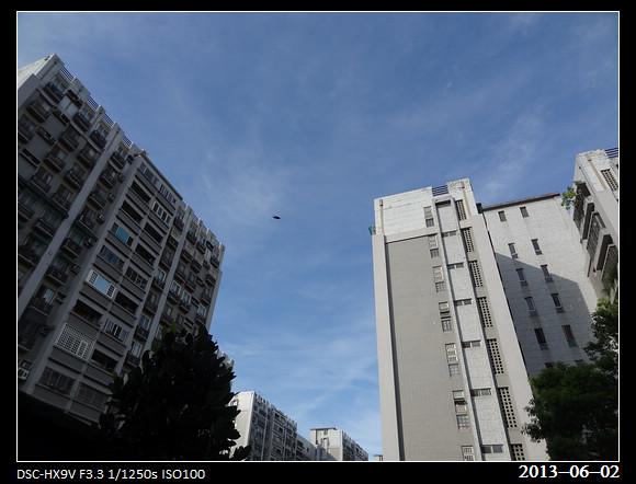 20130602_Bug2