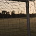 Soccer Field by soren-petersen