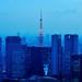 Tokyo Tower in Winter #2 by hidesax