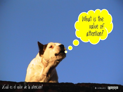 RoofDog: What is the value of attention?