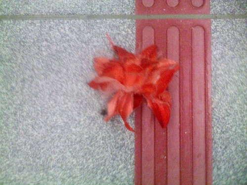 A flower on the floor