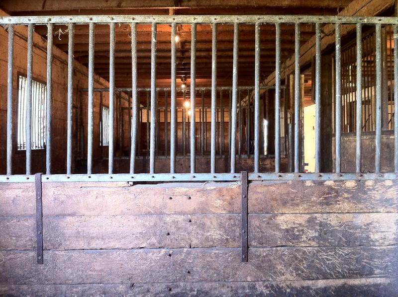 box stalls horse barn