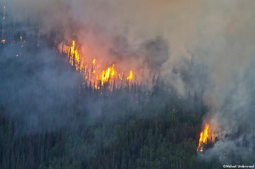 fire colorado smoke flames wildfire westforkcomplex papoosefire