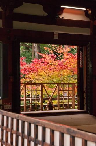 【写真】2012 紅葉 : 醍醐寺/2020-08-07/IMGP6860
