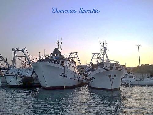 pescherecci al tramonto nel porto di Manfredonia by Domenica Specchio