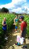 2012-08-23 Tulleys Farm 1