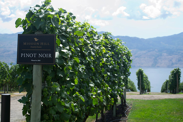 Mission Hill Winery | Okanagan, Canada