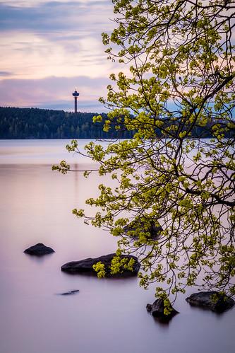 longexposure sunset tree leaves rock suomi finland landscape evening spring scenery cloudy may overcast polarizer tampere maisema näsinneula hoya kevät pyhäjärvi toukokuu härmälä pitkävalotus