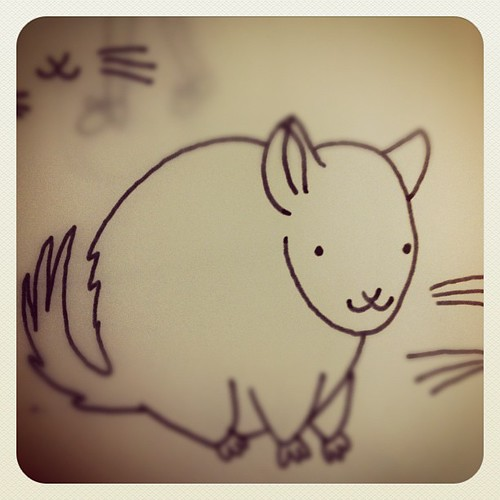 Drawing a chinchilla.