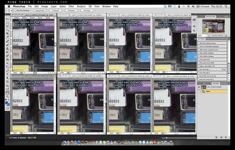 X2-noisecrops1 copy