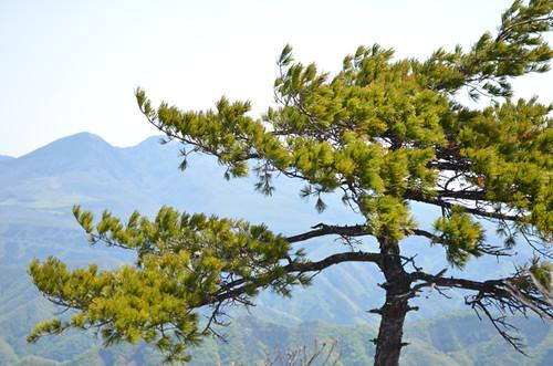 変わりやすい栗山の天気