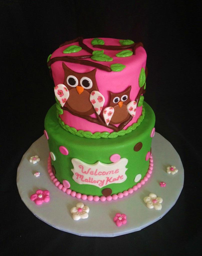 Owl Baby Shower Cake Caroline S Cakery Flickr
