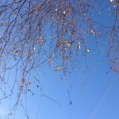 #autumn #loveweather