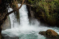 Banias Waterfall 1