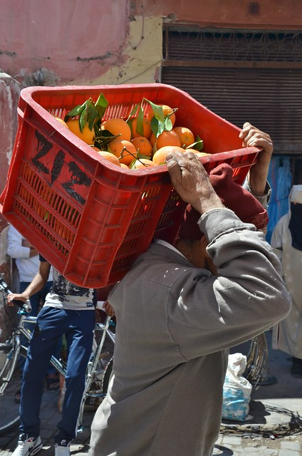 marrakech april 2014