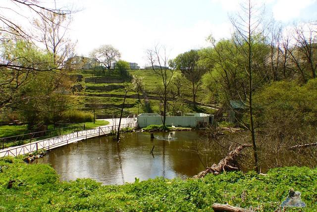 Zoo Bratislava 18.04.2015 152