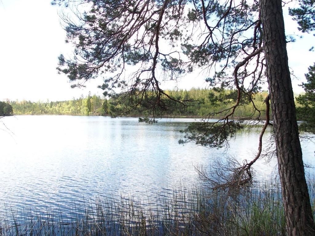 SÖ E10 Vaskasjön