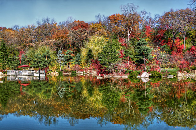Fall colors at anderson japanese gardens rockford il - Anderson japanese gardens rockford illinois ...