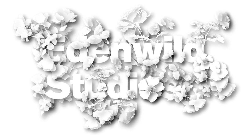 Edenwild Studios