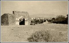Crna Gora Tomica