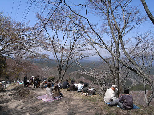 吉野の桜2011@吉野山-13