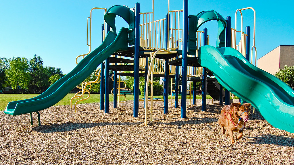 (20/52) Scout's Playground