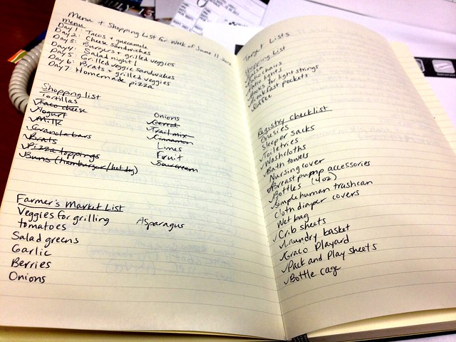 Productivity moleskine