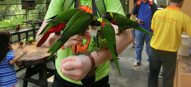 Kuala-Lumpur-Bird-Park-Malaysia (2)